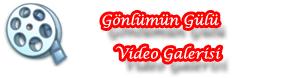 videologo.png (300×78)